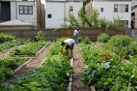 home vegetable garden home outdoor decoration