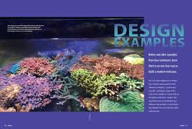Reef Aquascape Designs Coral Magazine New Issue U201creefscape Inspirations U201d Inside