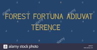 forest fortuna adiuvat u0027 u0027 fortune favors the brave latin phrase