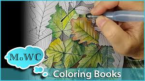 coloring with watercolor in coloring books youtube