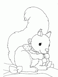 squirrel coloring pages cute baby squirrel and oak nut coloring