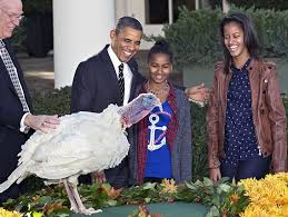 happy thanksgiving what it s all about and why they pardon a