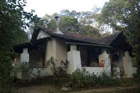 western ghats redscarab