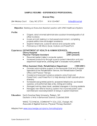 it professional resume example sales professional resume example experienced sales professional resume example