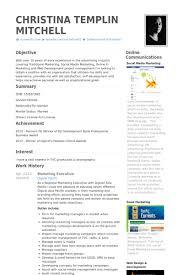 sales executive resume executive sales resume sles shalomhouse us