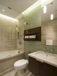 picture of minimalist wall shelves over toilet seat in spa like