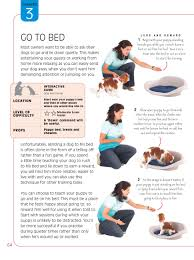 brain games for dogs fun ways to build a strong bond with your
