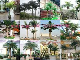 lxy082410 different types of plants and trees fake coconut tree