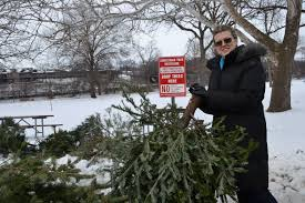 rock valley publishing llc u2013 13 christmas tree recycling sites to