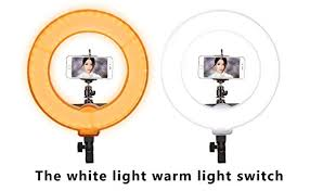 lighting for makeup artists ginson 12 inch 180led mirror ring light with stand