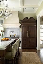 Cabinet Depth Refrigerator Reviews Counter Depth Refrigerator Reviews Kitchen Traditional With