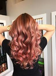 pic of 15 hair 19 hair colors you must adore hair coloring paul mitchell and rose