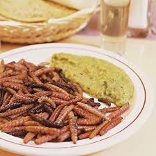 insectes dans la cuisine un food truck option insectes à