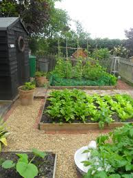 how to grow a food garden in a small space bcliving garden
