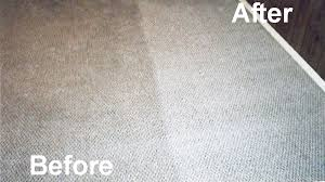 Brisbane Rug Cleaning Carpet Dry Cleaning Brisbane Carpet Dry Cleaner Brisbane