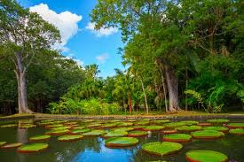 Most Beautiful Gardens In The World 10 Beautiful Botanical Gardens In The World