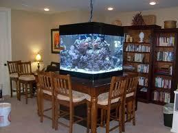 dining room table fish tank 92 best residential aquariums images on pinterest fish aquariums