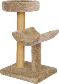 Curved Cat Scratcher Molly And Friends Simple Sleeper 37 Inch Cat Tree U0026 Scratching