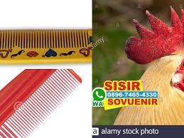 Jual Sisir Lipat Bogor jual sisir lipat pontianak harga jual souvenir sisir plastik kayu