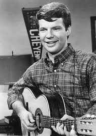 1966. Bobby Vee The Night