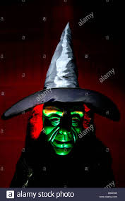 carnival halloween holiday wicked witch nose halloween costume