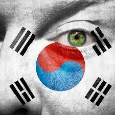 South Korea Flag Go South Korea Photograph By Semmick Photo