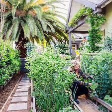 129 best edible gardening images on pinterest landscaping ideas