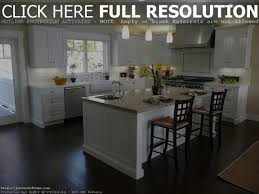Kitchen Color Schemes by Remarkable Dark Grey Kitchen Floor Tiles For Minimalist White