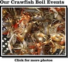 crawfish catering houston bergeron crawfish catering crawfish boil catering houston metro area