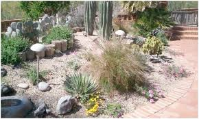 backyards beautiful desert landscaping ideas photos small