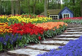 flowers beautiful flower arrangements for home infatuate arrange
