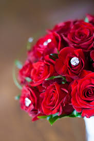Red Rose Bouquet Red Roses Bridal Bouquet Free Stock Photo