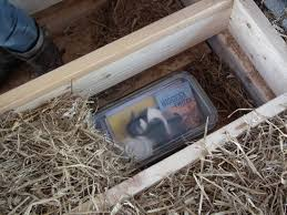 how to build a straw house part iii conwy conwy the rspb