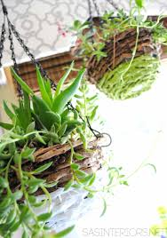 reta on pinterest little hiccups succulent terrarium workshop