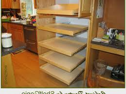 kitchen cabinets amazing pull out shelves for kitchen cabinets