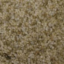 How Wide Is A Roll Of Carpet by Shop Carpet At Lowes Com