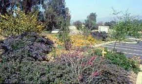 california native landscape styles