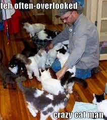 Crazy Cat Memes - crazy cat man by weimao on deviantart