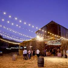 Backyard Party Lights by Best 25 Barn Wedding Lighting Ideas On Pinterest Country