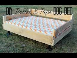Elevated Dog Bed With Stairs Diy Elevated Dog Bed Diy Dog Bed Youtube