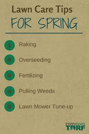 27 best spring summer lawn care images on pinterest lawn care