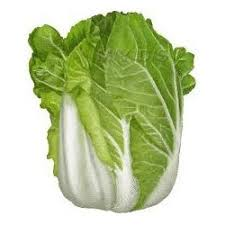 cabbage china cabbage in mumbai get prices and mandi rate from
