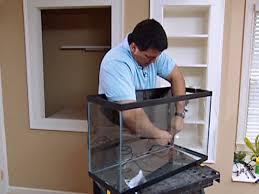 how to set up an aquarium how tos diy