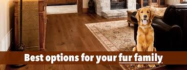 choosing the best hardwood floors for dogs 3 factors you must