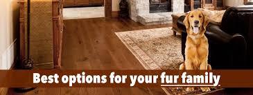 choosing the best hardwood floors for dogs 3 factors you must
