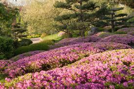 Botanical Gardens In Illinois Chicago Botanic Garden Glencoe Illinois Top Botanical Gardens