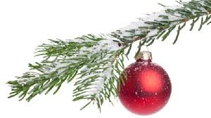 cut your own christmas trees across the state ksl com