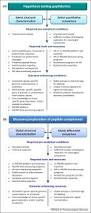 peptidomics for the discovery and characterization of