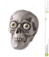 halloween skull foam skull halloween prop halloween skull