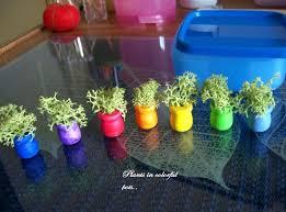 Small White Vases Bulk Simple White Fans Succulents Ceramic Zakka Small Bonsai Pot Plants